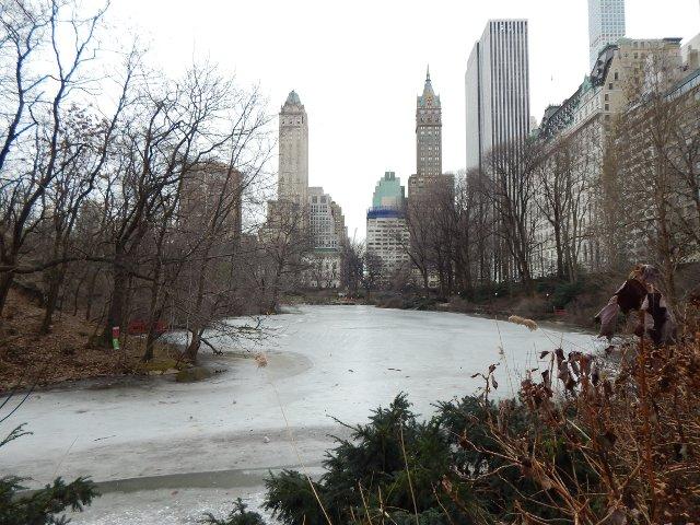 Eisflächen im Central Park New York
