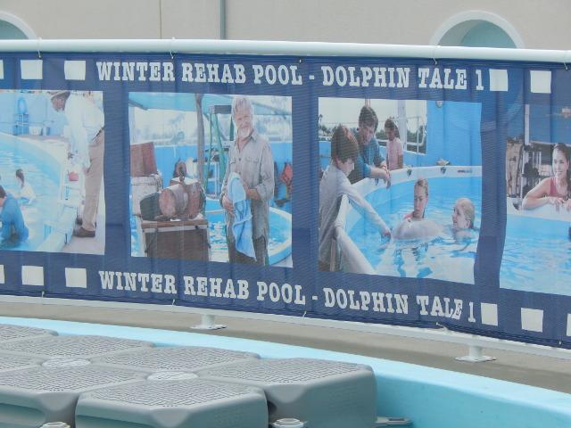 Mein Freund, der Delfin, Filmpool für Winter