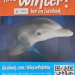 Facebook account von Winter, dem Delfin