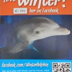 Facebook account von Winter, dem Delfin