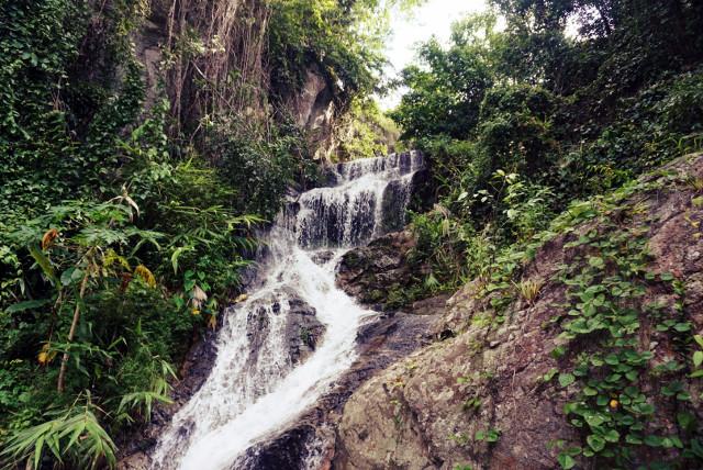 Ein schmaler Wasserfall plätschert im Grün des Dschungels hinunter.