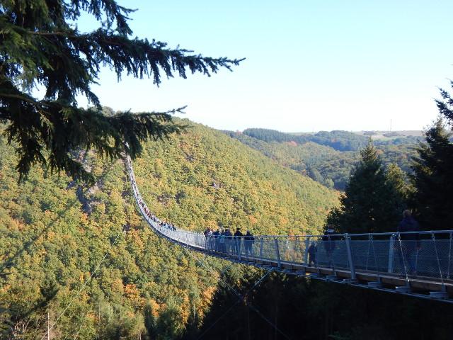 Die Hängebrücke Geierlay im Hunsrück