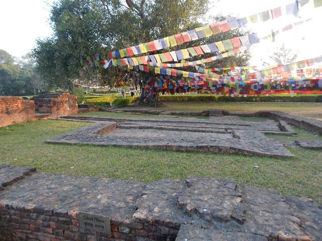 Gebetsflaggen im heiligen Garten von Lumbini.