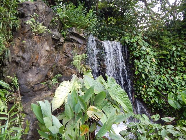 Wasserfall im Ginger Garden, Botanischer Garten Singapur