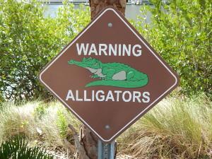 Schild mit Warnung vor dem Alligator
