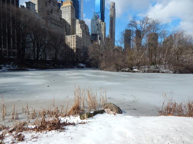The Pond im Central Park