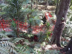 Asiatische Treppe mit Farnen