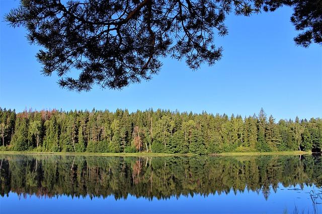 Schweden, Fichtenwälder und Seen