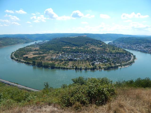 Die größte Rheinschleife vom Aussichtspunkt Gedeonseck aus gesehen.
