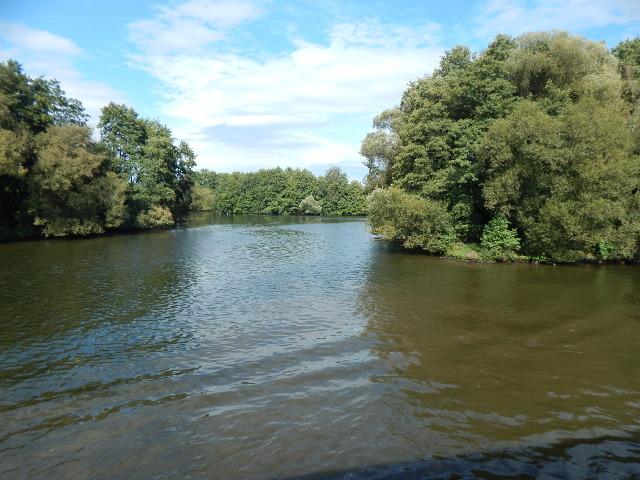 Die Natur am Main-Donau-Kanal