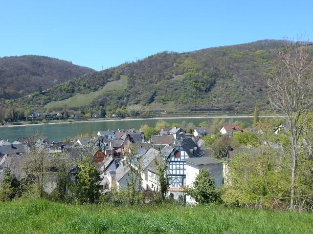 Der Anstieg mit Blick auf Filsen und den Rhein
