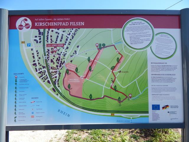 Wegeführung des Kirschenpfads in Filsen am Rhein