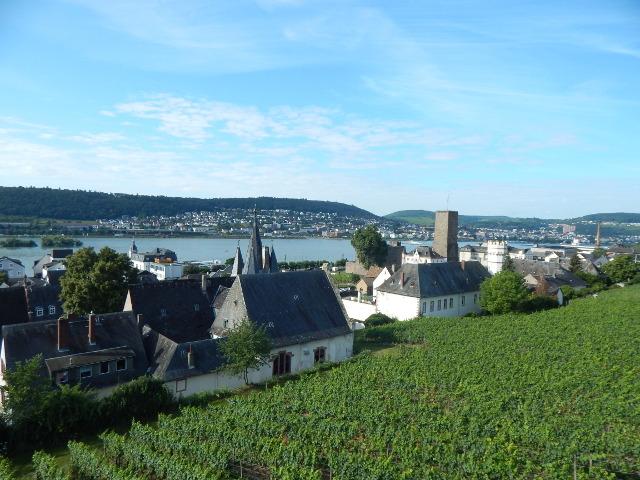 Blick von der Seilbahn auf Rüdesheim am Rhein