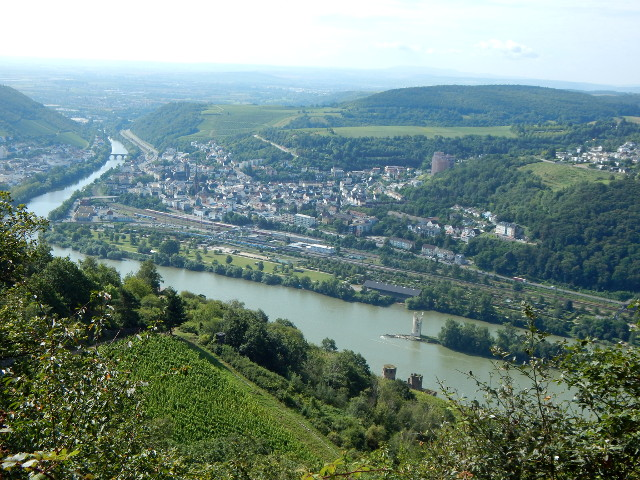 Der Naheblick im Niederwald