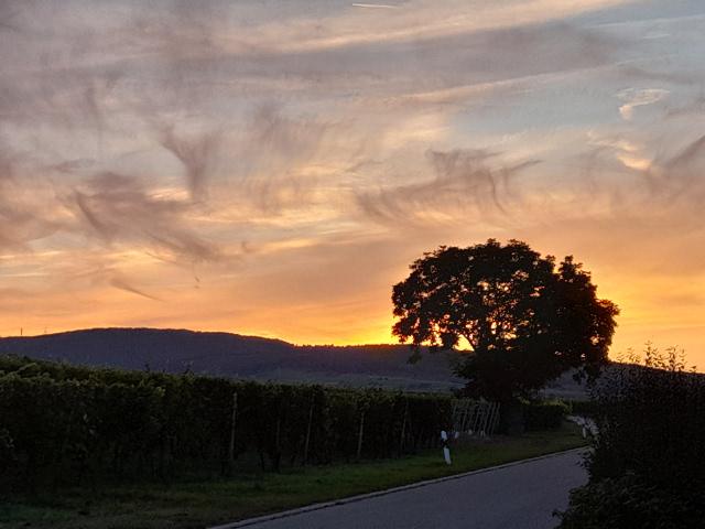 Stimmungsvoller Sonnenuntergang beim Eurostrand Resort Leiwen