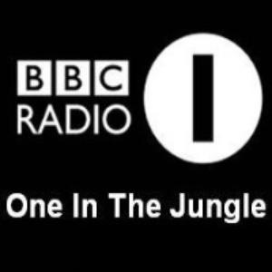 Rave Archive UK » BBC Radio One in the Jungle – 1995