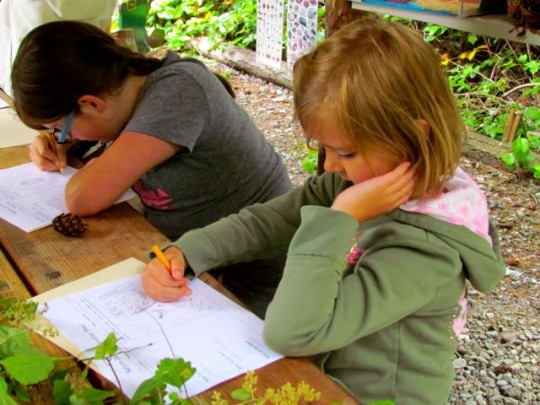Writing In Their Nature Journals
