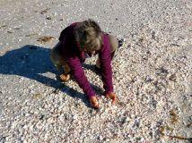 Gazillions of shells