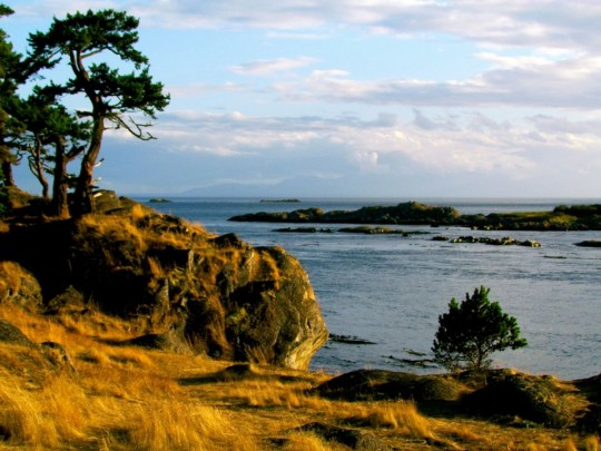 Outdoor Adventures On Lopez Island