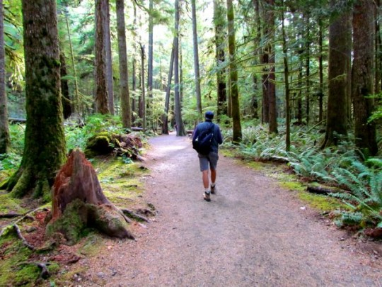 Hike To Marymere Falls