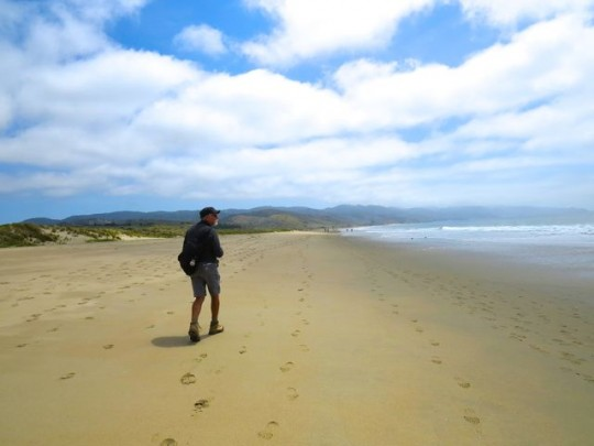 Gorgeous Beach On Drakes Bay