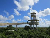 Observation tower in Shark Valley