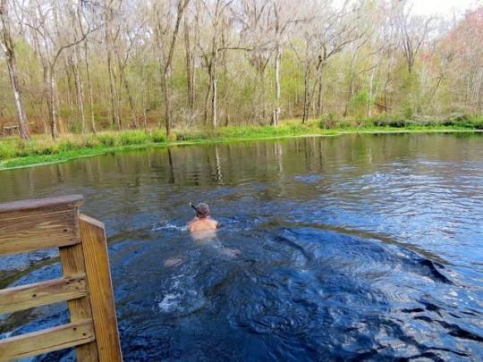 Snorkeling In The Springs