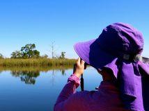 Calm day kayaking on the Ochlockonee River