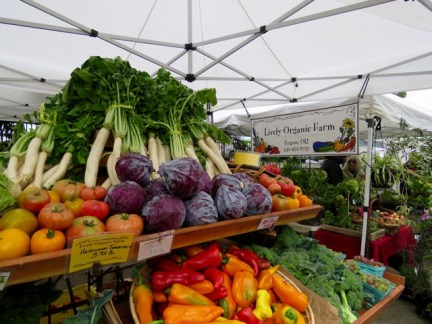 Fall abundance at the farmers' market