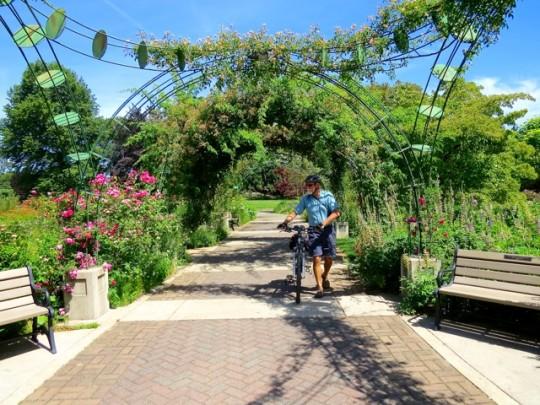 Lovely Owens Rose Garden
