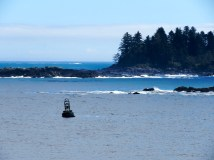 Bell buoys ring out along the coast