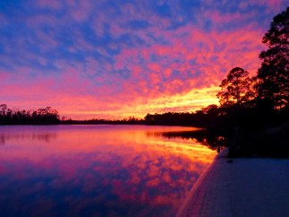 Ochlockonee River, Florida