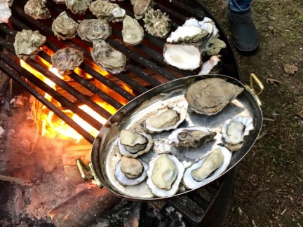 Fire-roasted oysters at camp