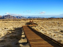 Boardwalk at the refuge