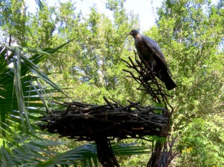 A bronze hawk in the gardens