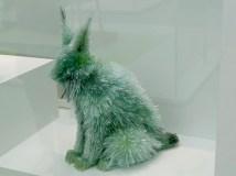 A glass lynx