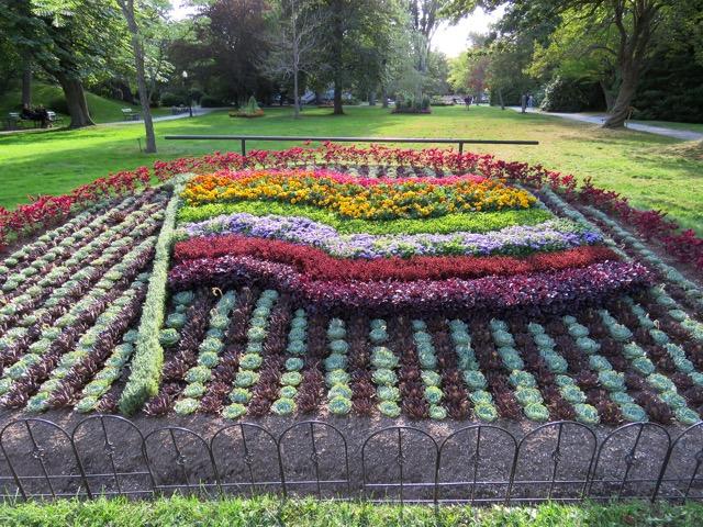 A Pride Flag Flower Garden