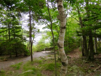 Shubie Park is a beautiful park and fun for biking or walking