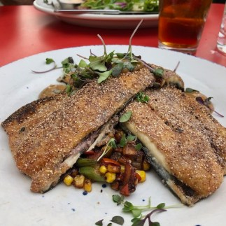 Blue corn crusted Carolina trout with succotash of tiny okra, corn, tomatoes, lima beans, and bacon