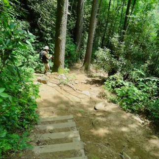 The hardest part is the many stairs on the trail