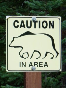 If you understand bears and apply your knowledge, most bear incidents are preventable.