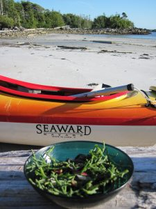 Sea Asparagus Salad with a view on Price Island, British Columbia Mid-coast