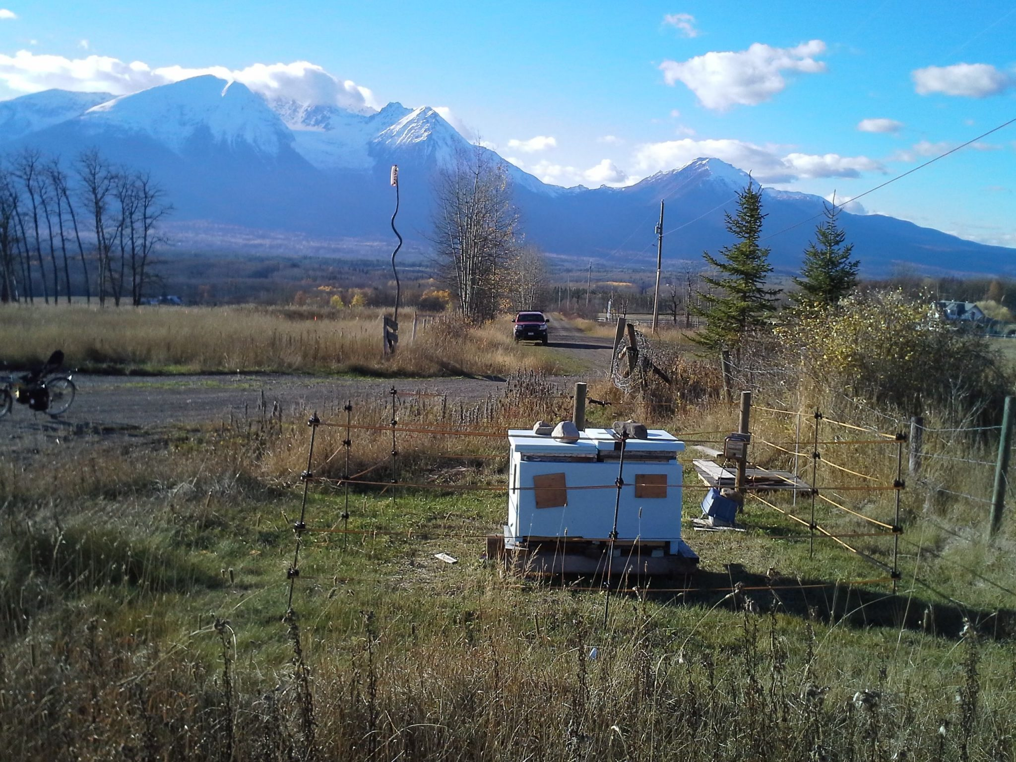 Electric Fences Make Good Neighbours For People And Bears