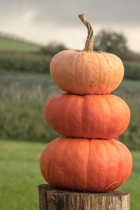 Correspondence of Samhain~Halloween
