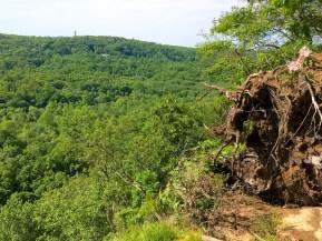 Looking east off of Raven Rocks overlook in summer 2014.