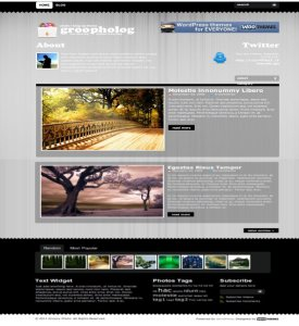 groovy photo premium wordpress theme for photographers from woo themes