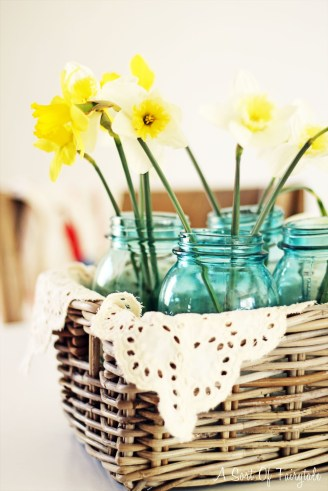 daffodils 1.5
