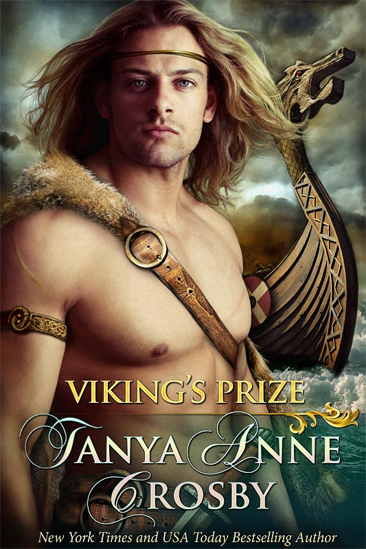 Viking's Prize Book Cover Art