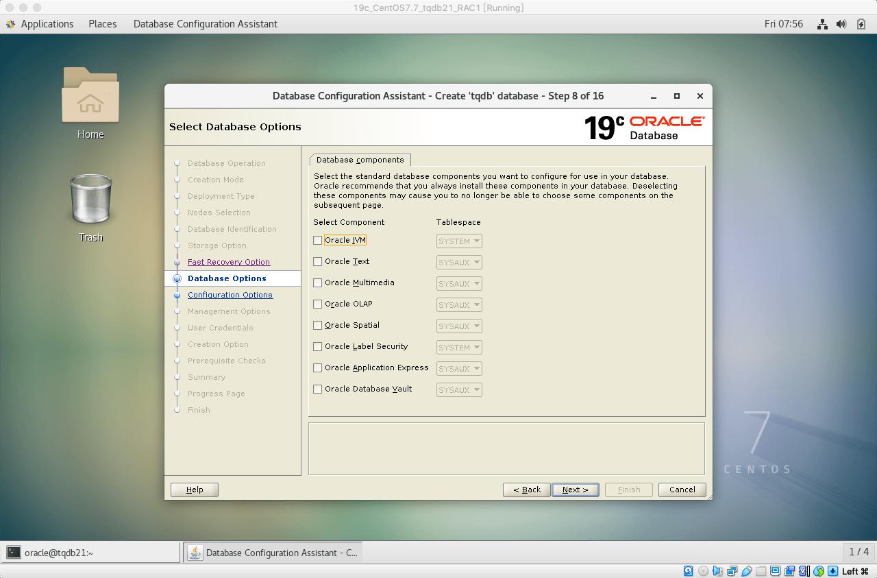 19cRACdbca建库09