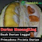 Durian MusangKing, Durian Unggul Yang Mendapat Gelar Raja Durian Dari Malaysia